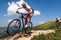 رکابزنان اعزامی به مسابقات  قهرمانی آسیا مشخص شدند