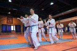 آغاز تمرینات کاراته کاها برای مسابقات اتریش