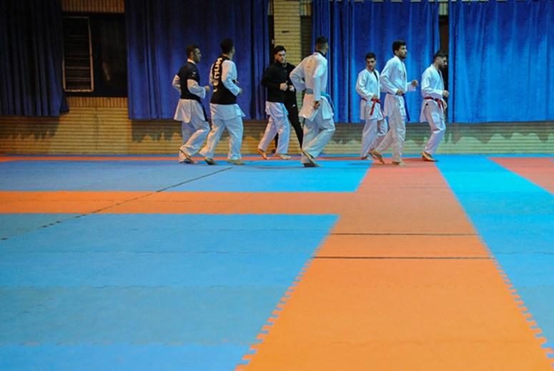 کاراته کاهای ایران راهی فرانفکورت می شود