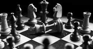رد صلاحیت شادی پریدر و ۸ نفر از نامزدهای انتخابات شطرنج!