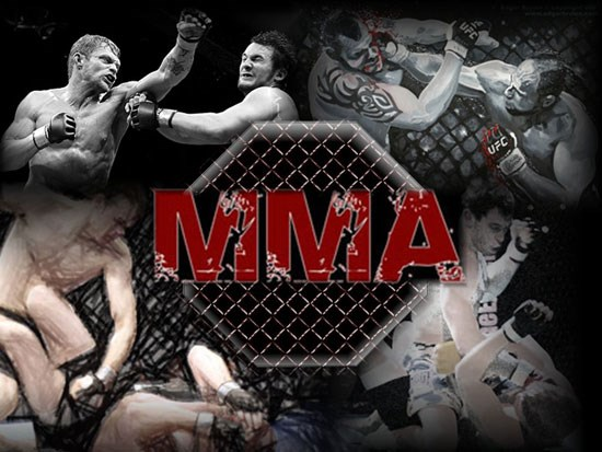 صدور مجوز MMA ؛ آیا پای یک آقازاده در میان است؟